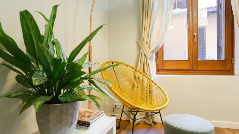 Charme-Apartment-Campo-de-Fiori-Roma-58000
